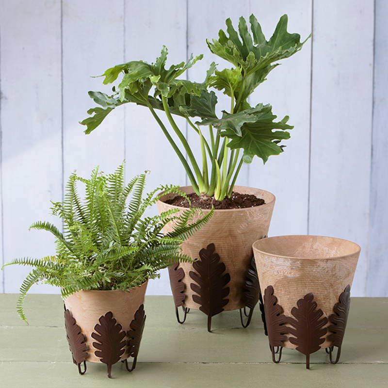 Each size offering of our botanical plant stand