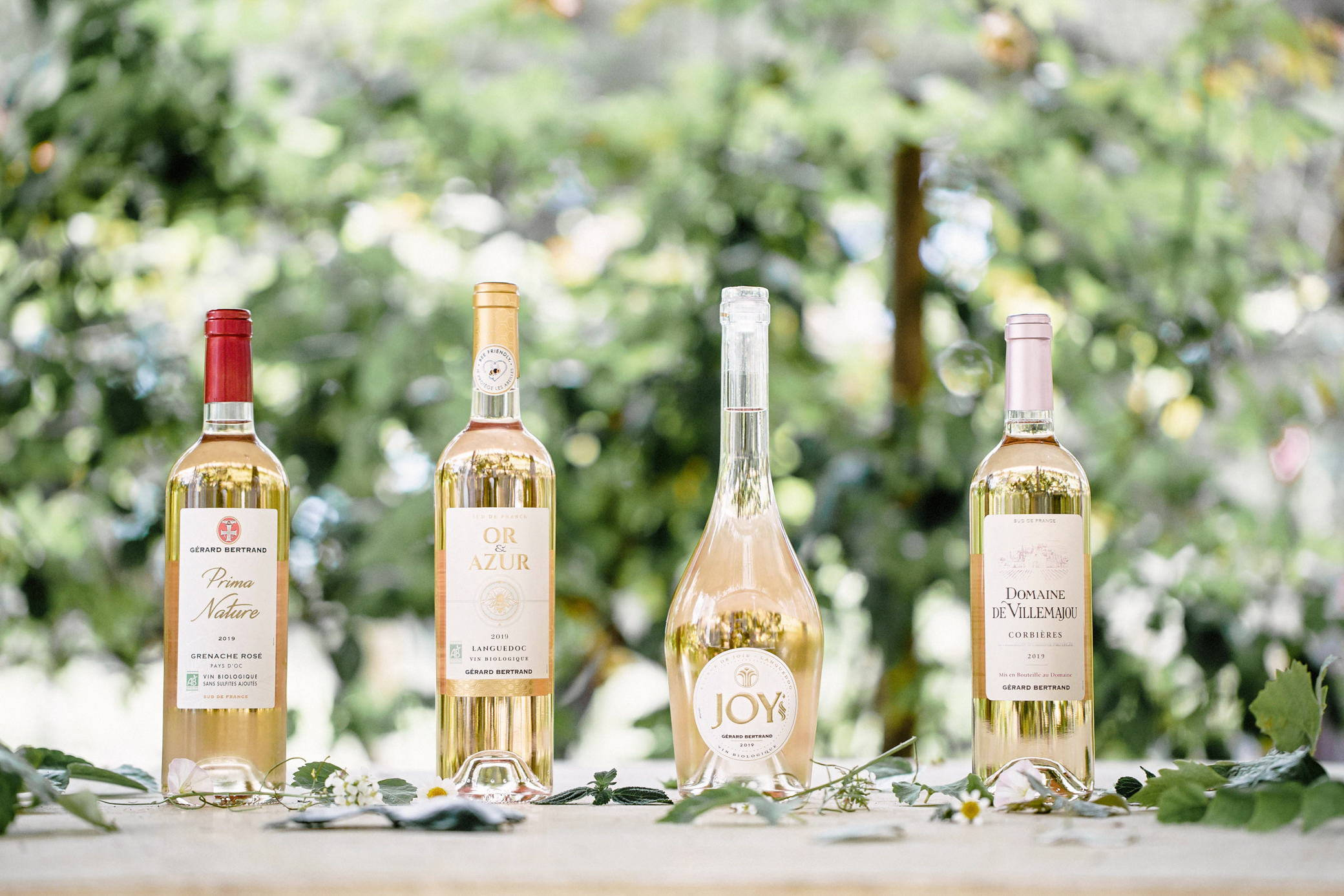 La Fabrication de vin rosé du sud de la France