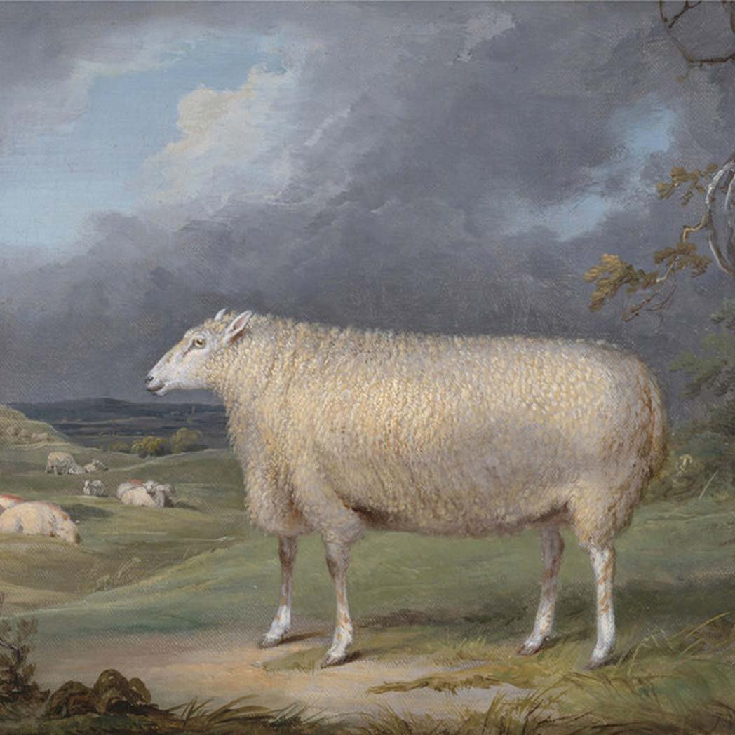 James Ward Art
