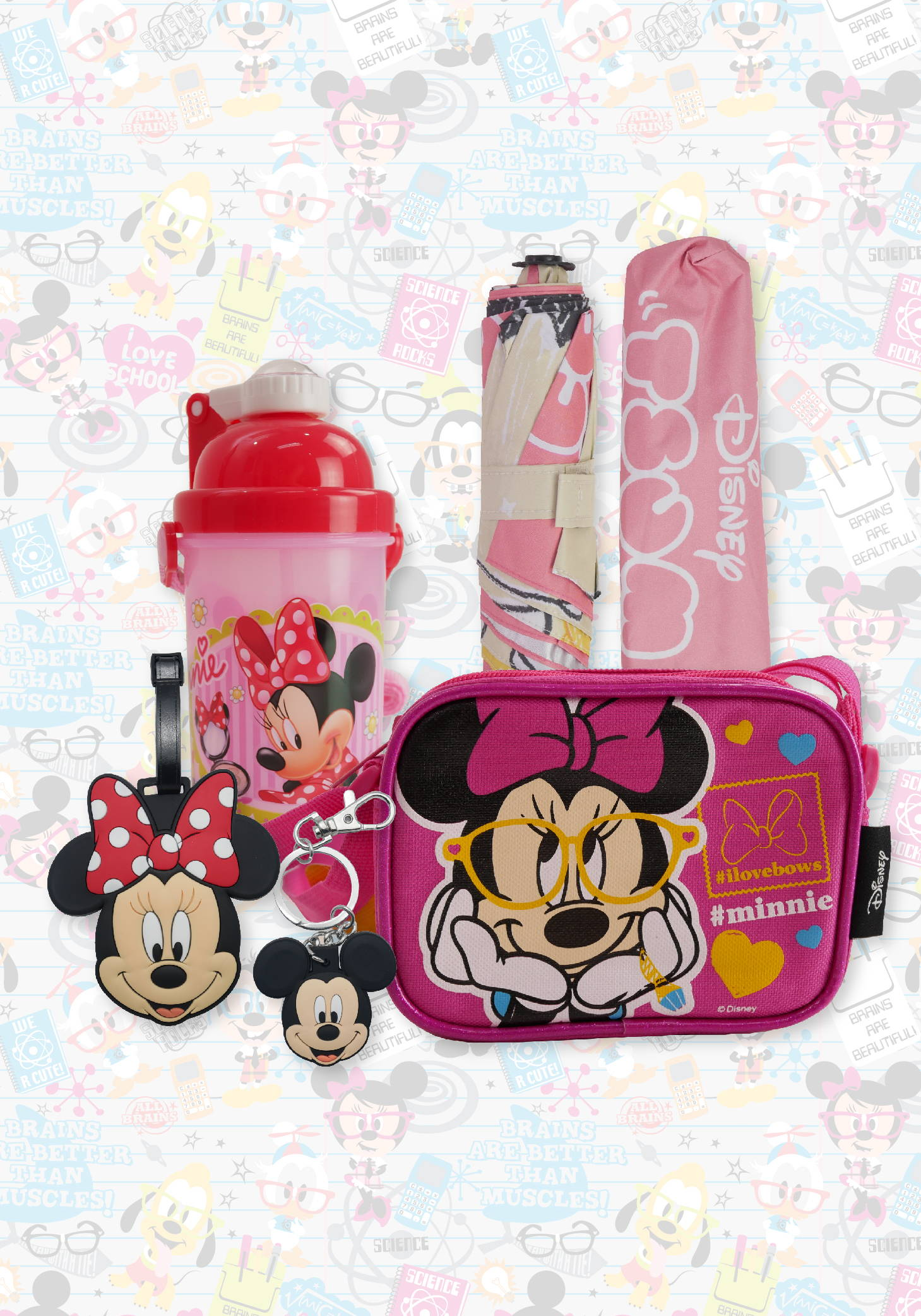 Mickey Mouse bags, water canteens, accessories