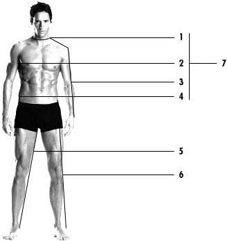 Men's Clothing, Accessories & Footwear Size Guide