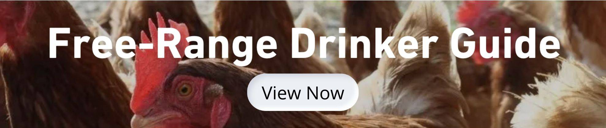 View our free-range drinker guide