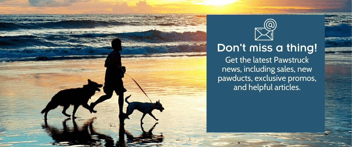 Photo of man running on the beach at sunset with two dogs. Blue box with white text: Don't Miss a Thing! Get the latest Pawstruck news, including sales, new pawducts, exclusive promos, and helpful articles.