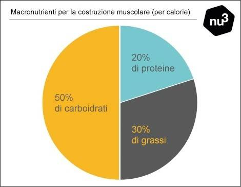 Macronutrienti per la costruzione muscolare
