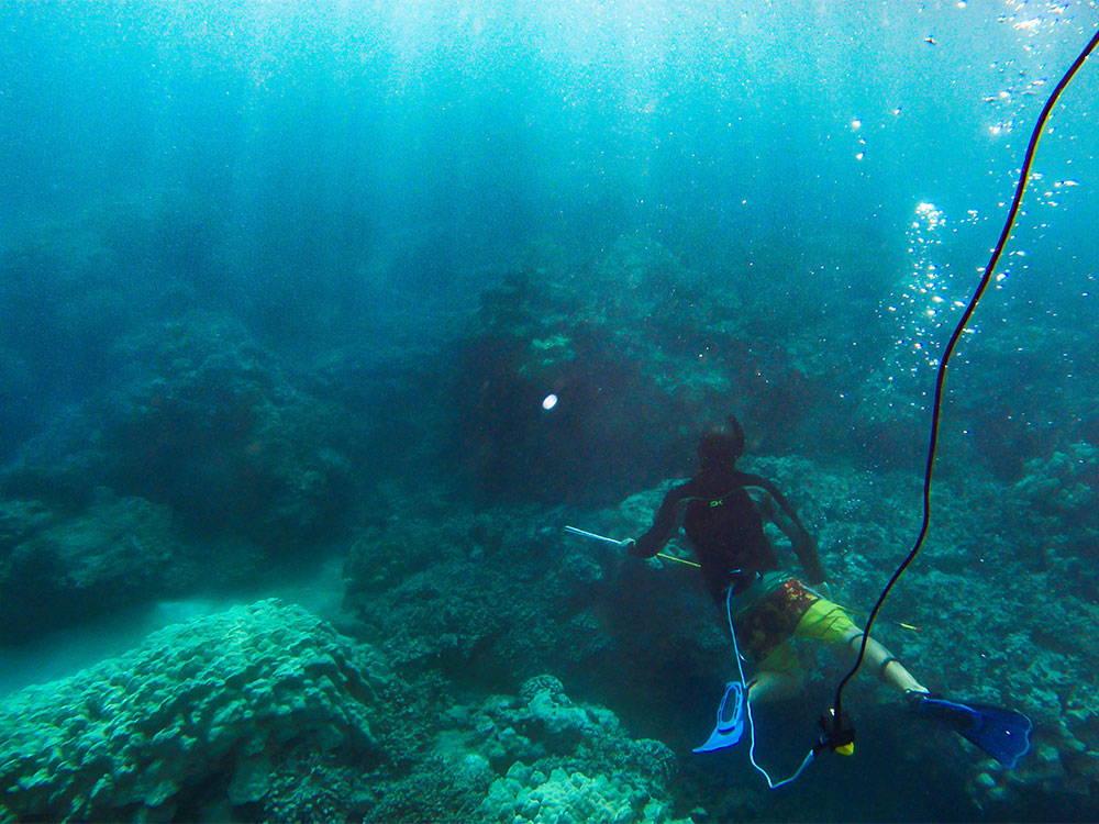 Underwater spearfishing