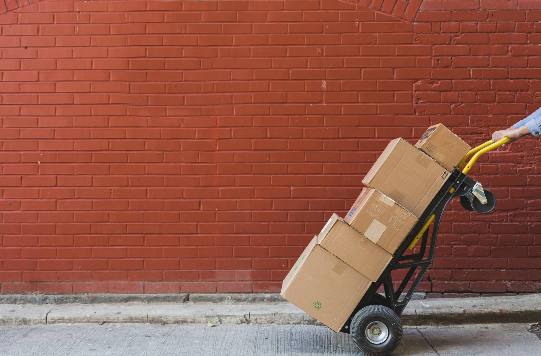 Wholesale and Distributorship
