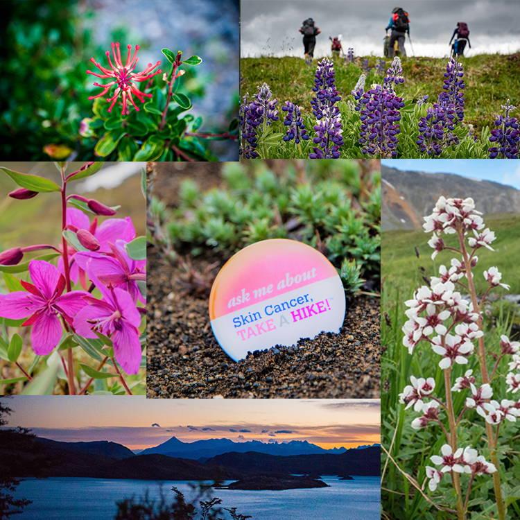 skin cancer take a hike flowers patagonia kilimanjaro alaska denali