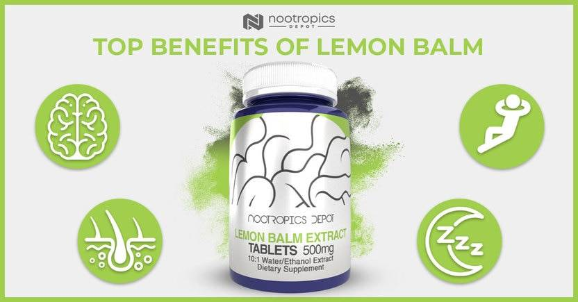 The Top Benefits of Lemon Balm Extract
