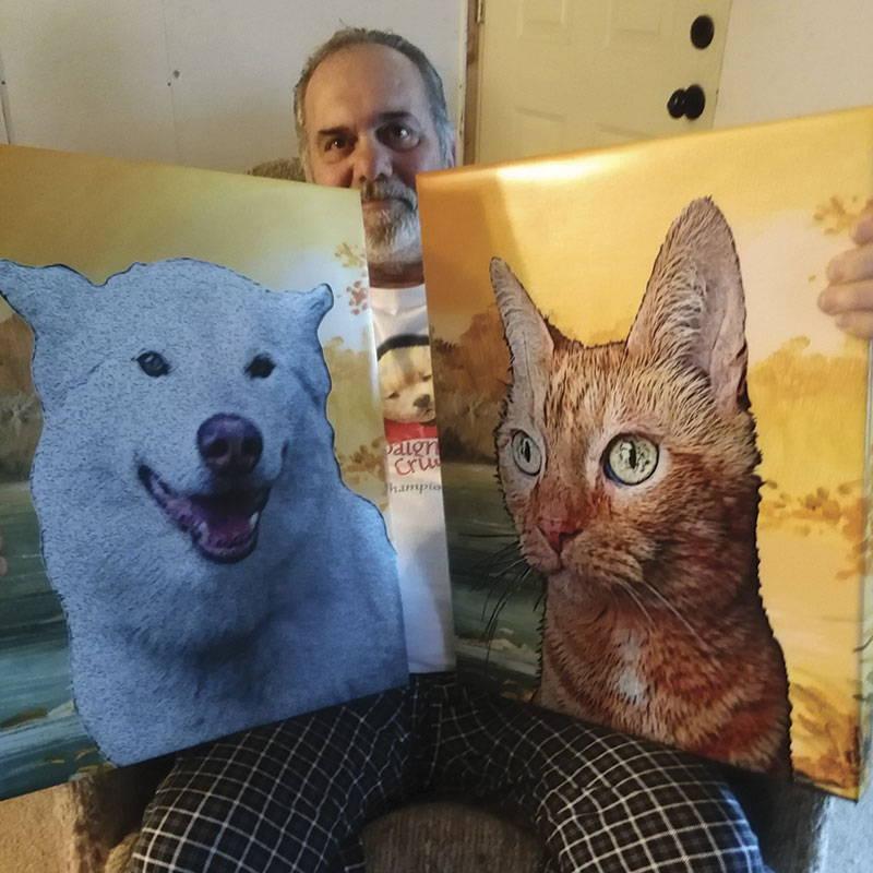 dog and cat portrait - sunset