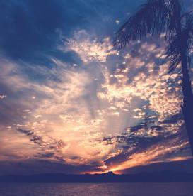 dawn-rising-early
