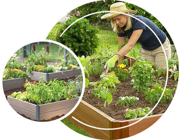 A woman tending to her raised bed garden