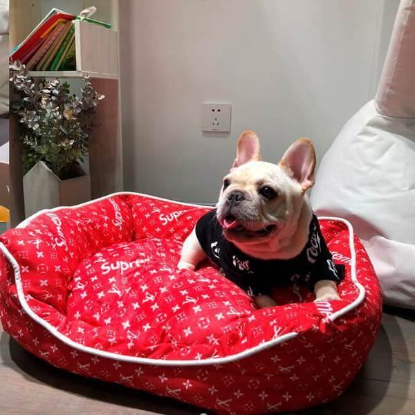 Pupreme & Pawtton Designer Dog Bed | Supreme Dog Garage