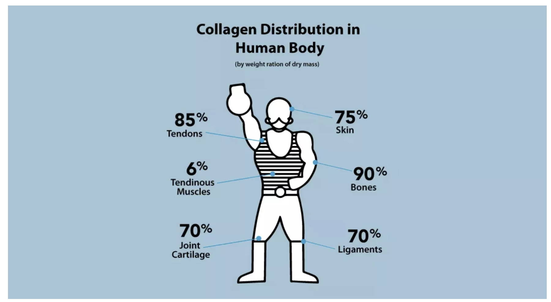 Whey Vs. Collagen Protein: Which Is Right For You? - Amandean