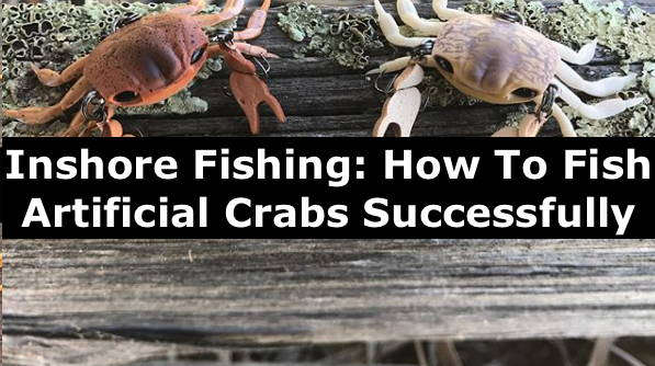 How to fish with artificial crabs