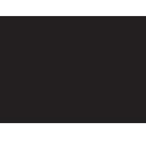 Browning Firearms Logo