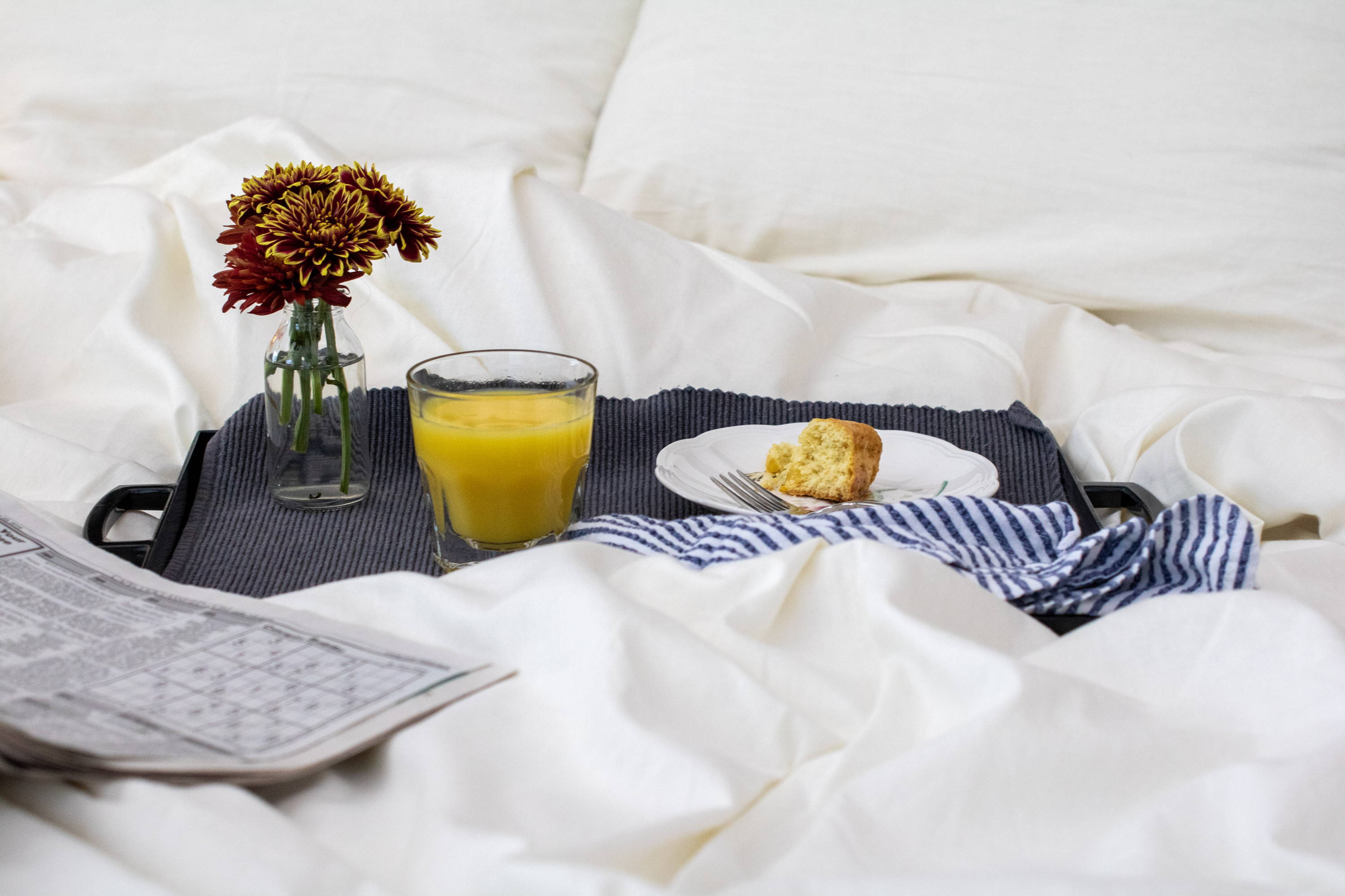Breakfast in Bed on Wool Comforter Sonoma Wool Company Eco-friendly Bedding Wool Bedding