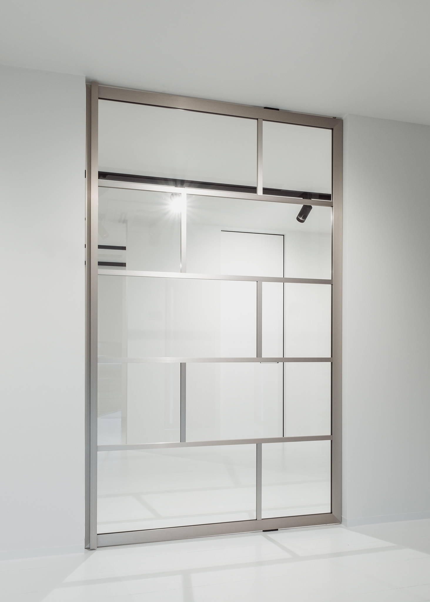 Stainless steel glass pivot door
