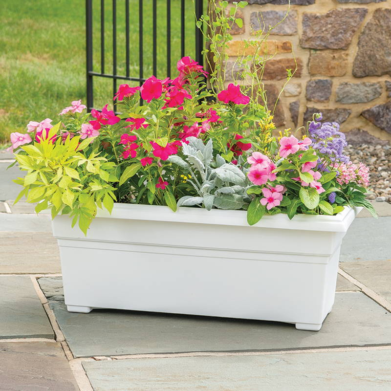 A variety of flowers growing in a white countryside patio planter