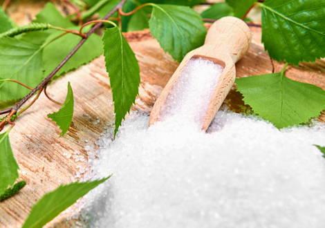 Xylitol substitut de sucre