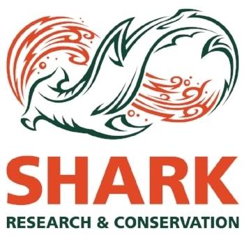 Shark Research and Conservation Program Logo