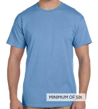 Hanes ComfortBlend EcoSmart T Shirt