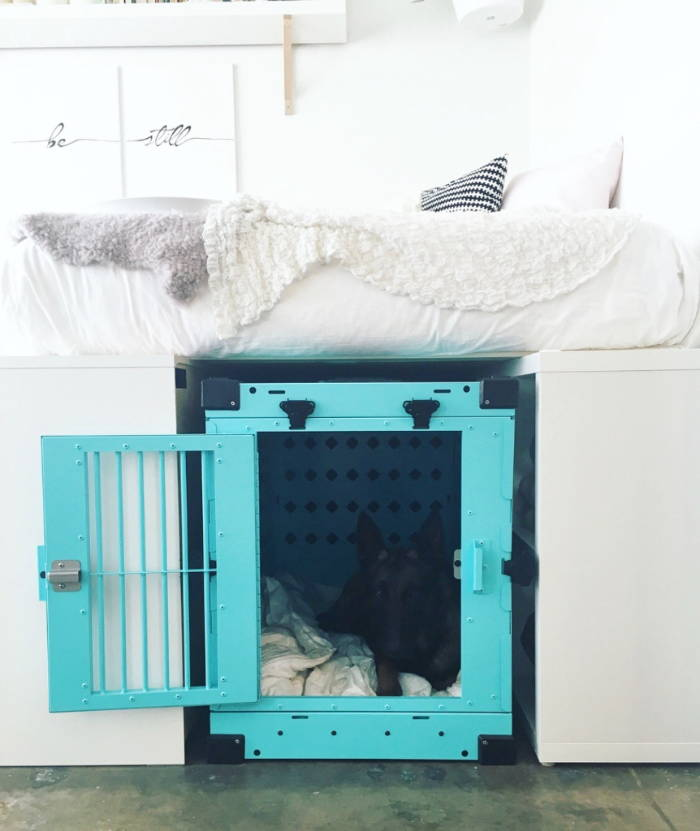 x large size 450 teal collapsible impact dog crate in bedroom storage