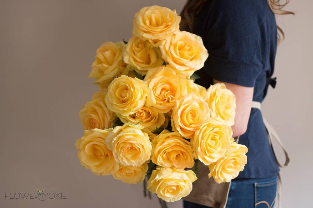 Deja Vu Yellow Roses