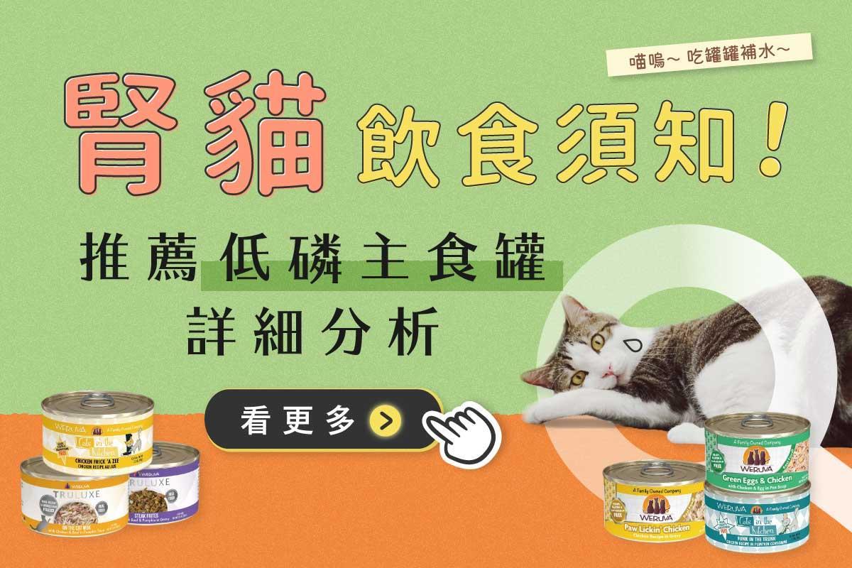 低磷貓罐頭推薦