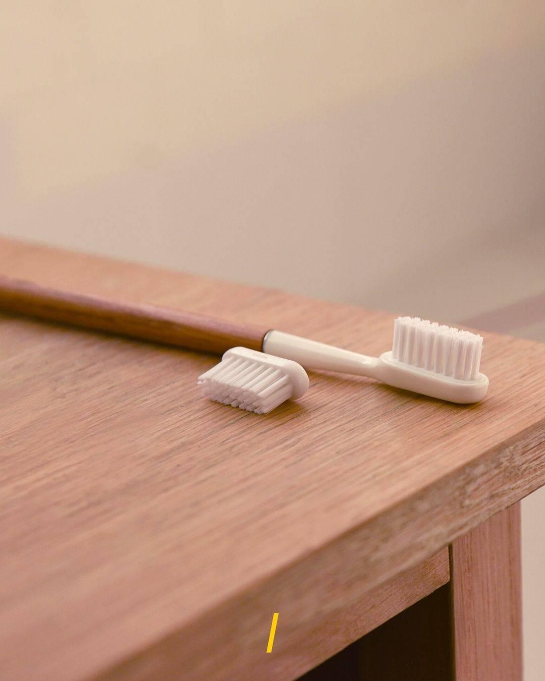 La brosse a dents en bois de chene - Tete interchangeable - Caliquo