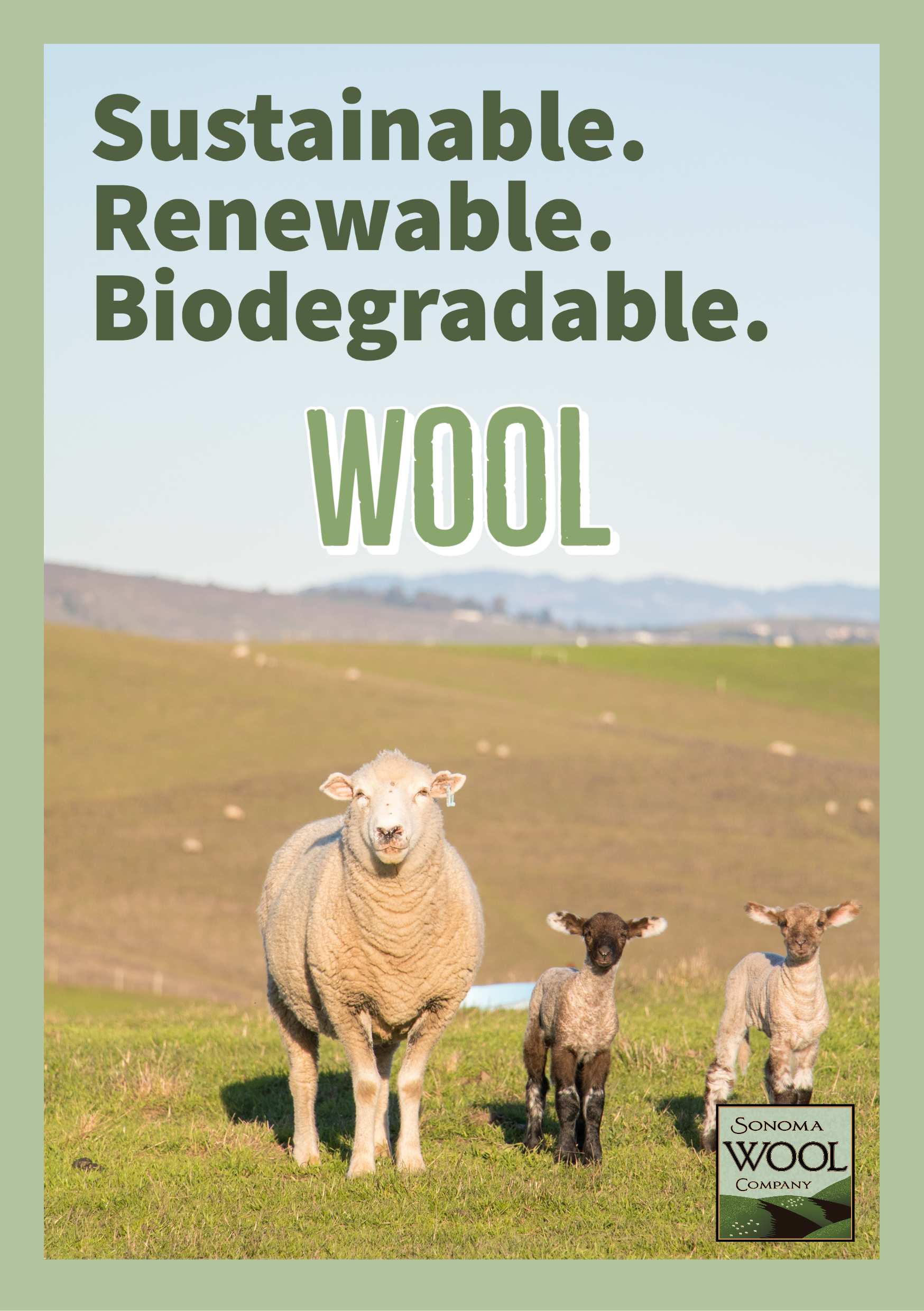 Wool is Sustainable, renewable, and biodegradable - Sonoma Wool Company