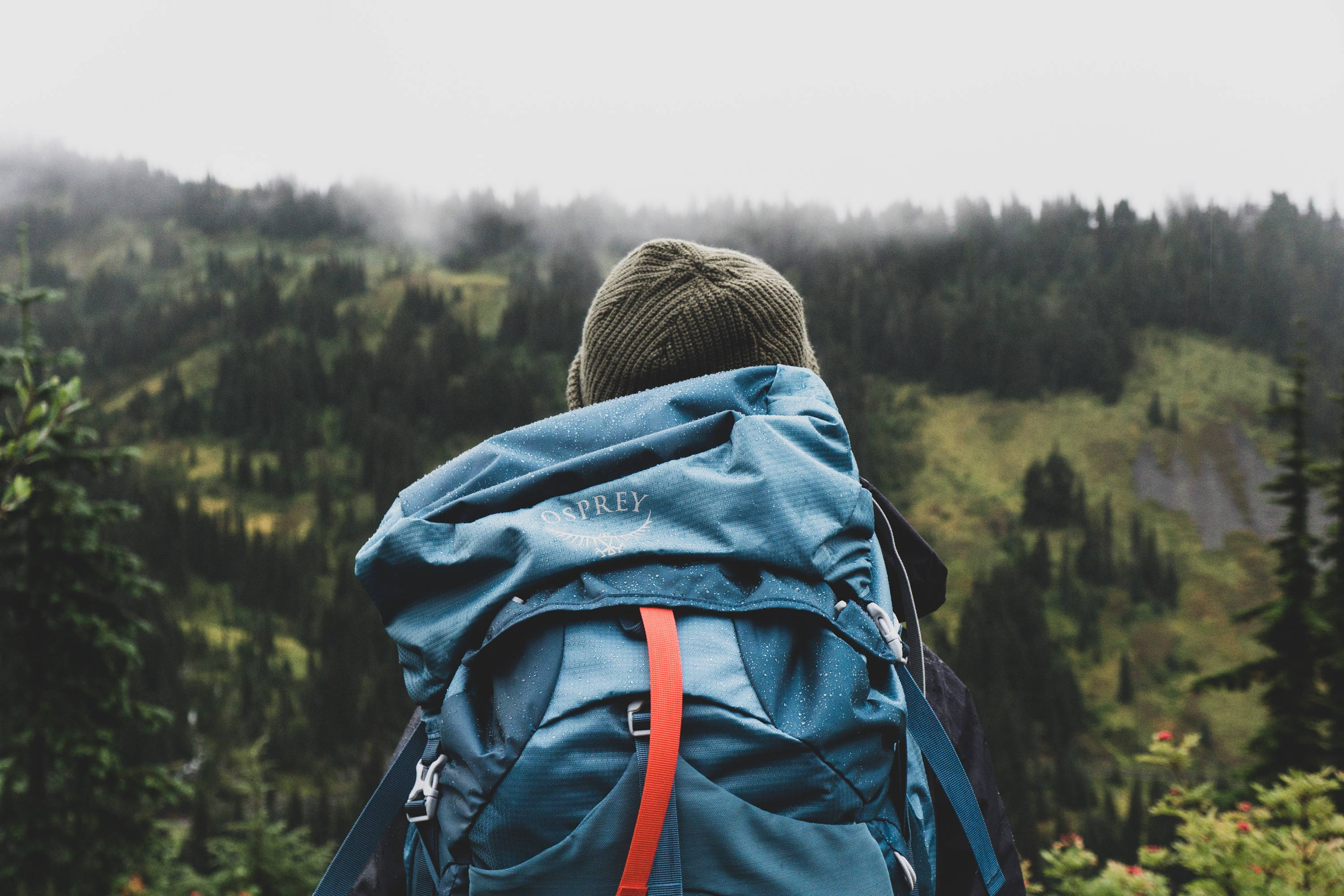 Best Backpacking Backpack: Why Osprey Packs are Superior. Blue Osprey backpack sits on back of hiker with forest ahead.