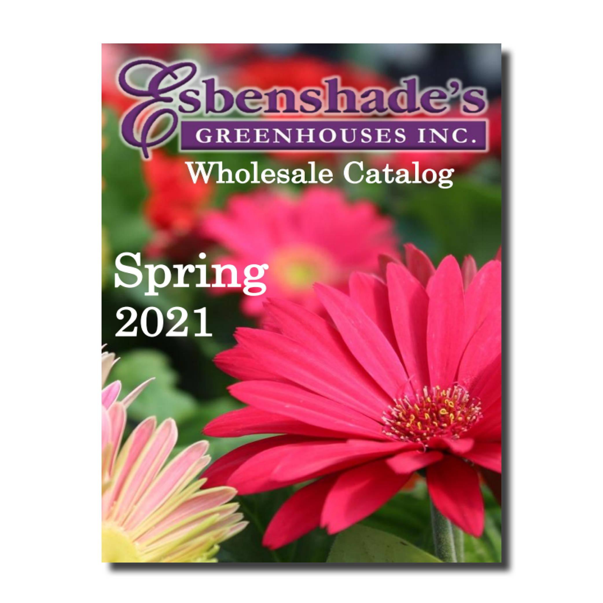 2021 Wholesale Spring Finished Catalog