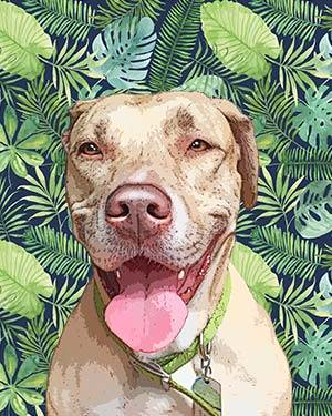 pitbull on fern backgrounds