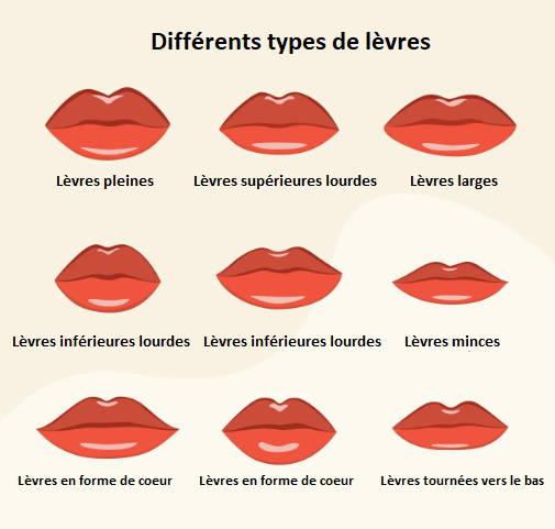 Les différentes formes de lèvres