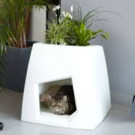 plant pot for cats
