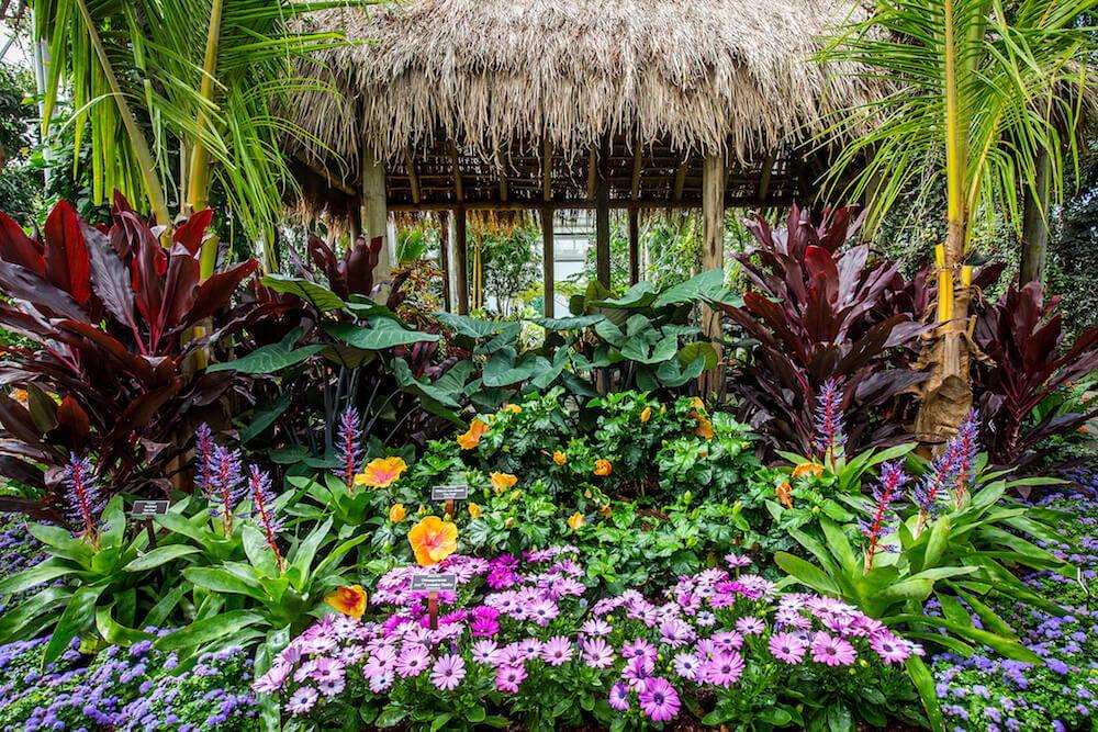 New York Botanical Garden Georgia O'Keefe installation