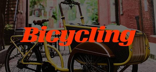 2021 Bicycle Magazine E-Bike Awards Logo