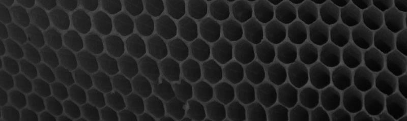 honeycomb Yamamoto neopene
