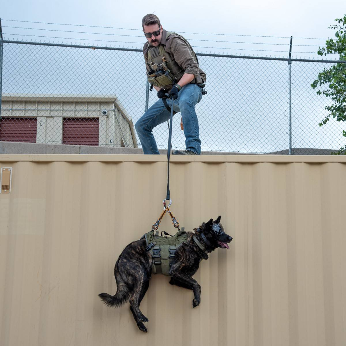 Tactical K9 being lifted