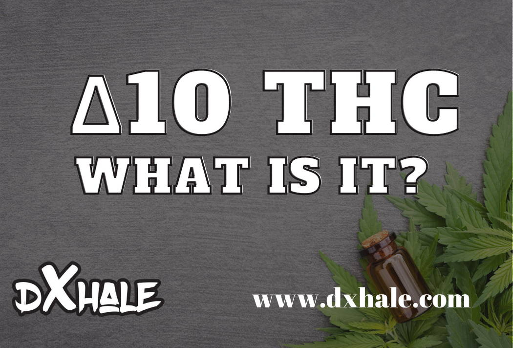 What Is Delta 10 THC?