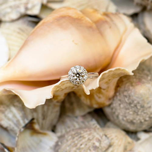 Schiffman's Engagement Ring in a Shell