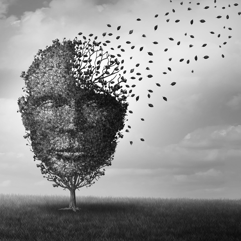 CBD for Anxiety & Stress – TribeTokes