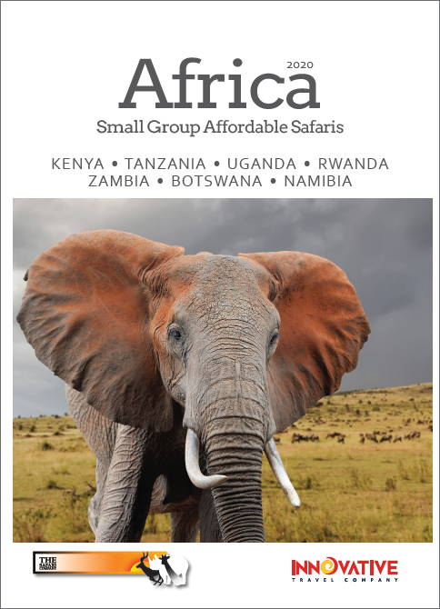 Africa 2020 Brochure