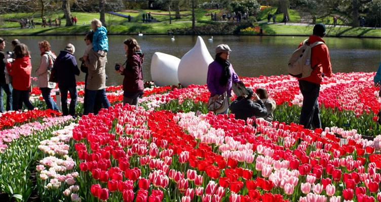 Keukenhof, le plus grand parc floral d'Europe !