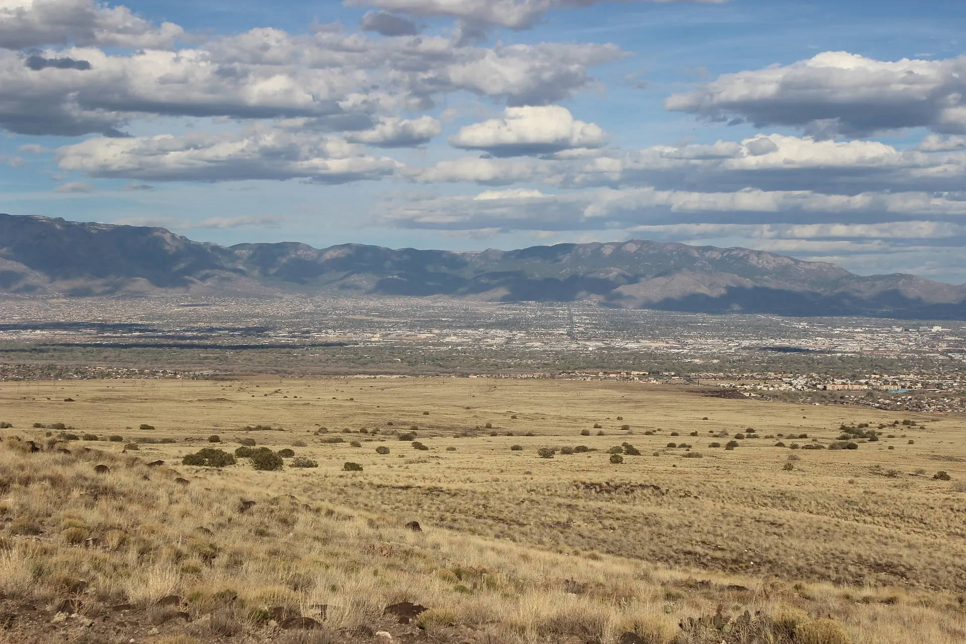 5 Best Reviewed Newborn Photographers of Albuquerque, NM