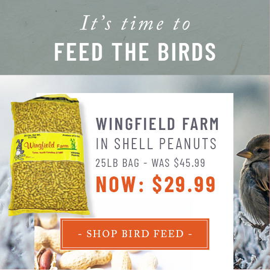 Shop Wingfield Peanuts