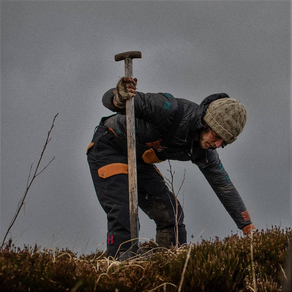 A man planting a tree in Ireland