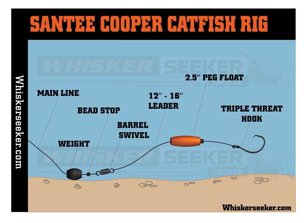 Catfish Rig - Santee Cooper - Whisker Seeker Tackle