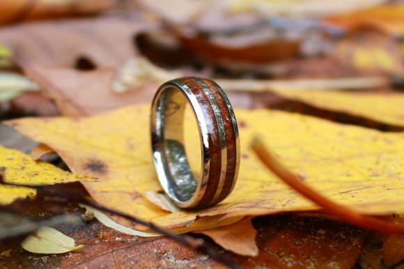 The meaning of wood rings - For the ourdoorsman