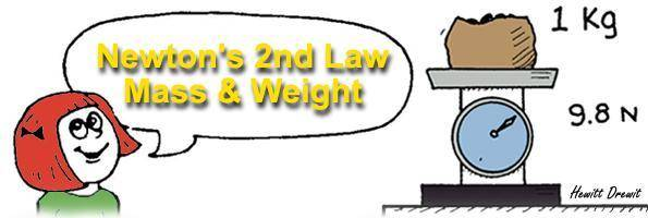 Newton's 2nd Law Mass & Weight by Hewitt Drewit